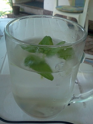 Ice water with fresh mint