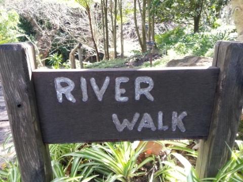 Vineyard Hotel River Walk