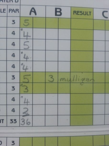 Mikes score card