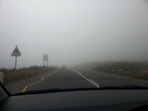 Mist on Ou Kaapse weg