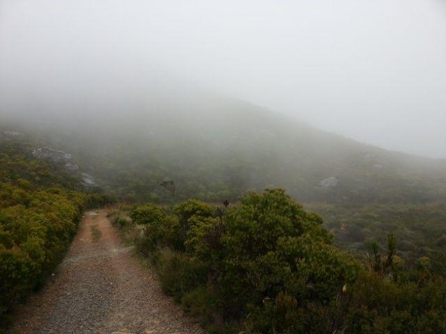 Road through the cloud