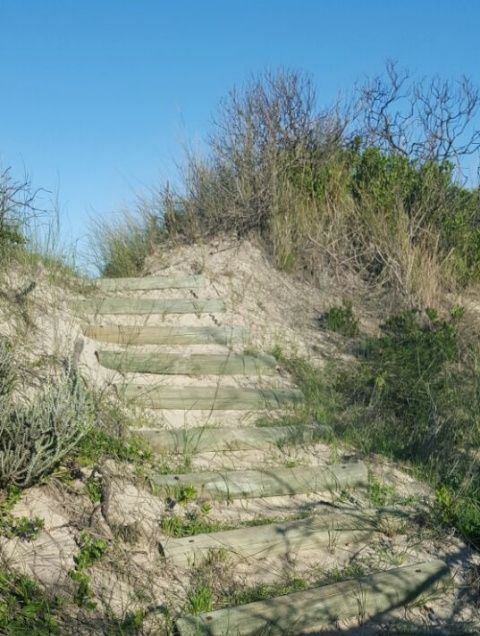 Steps along the way