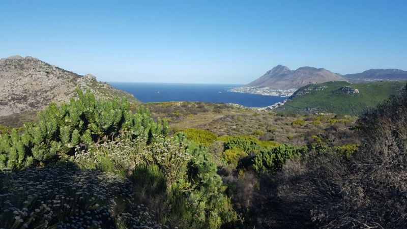 View of Simons Town